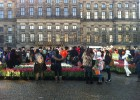 National Tulips Day in Amsterdam