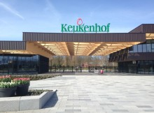 Keukenhof 2019, what is the best time to visit