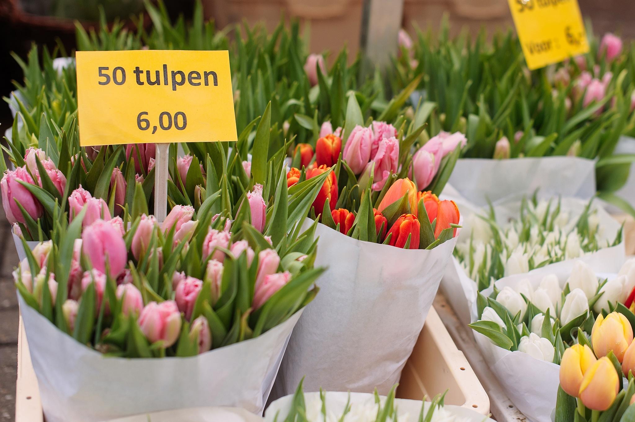 Flowermarket (Bloemenmarkt) Amsterdam, Things to do in Amsterdam, photo: Kristina Kutena